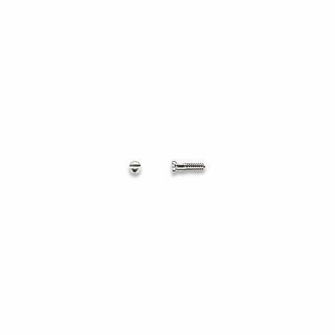 Screws, Nose Pad, Silver 1.0 mm