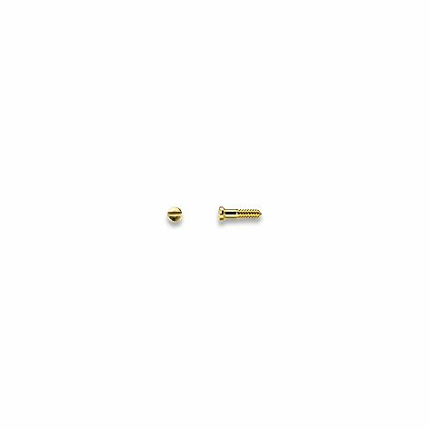 Screws, Nose Pad, Gold 1.0 mm