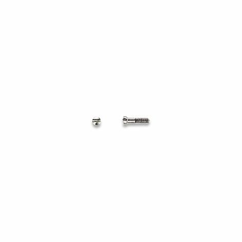Screws, Nose Pad, Silver S/S 1.0 mm